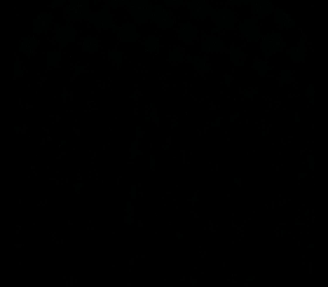 Solar Dynamics Observatory 2020-08-11T06:41:42Z