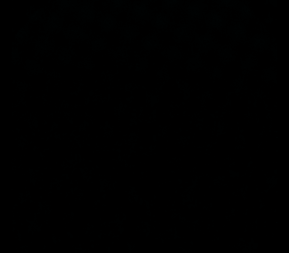 Solar Dynamics Observatory 2020-08-11T07:15:09Z
